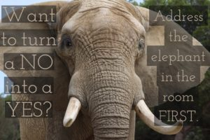 elephant in the room text image