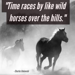 time-races-by-like-wild-horses-over-the-hills